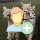 Kurs Alpakasachkunde mit staatlich anerkannter Prüfung